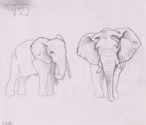 Skizzenbuch afrikanischer Elefant