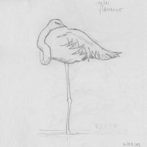 Skizzenbuch Fauler Flamingo